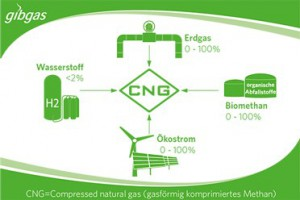 CNG_Bestandteile_Grafik_gibgas_news_372x248_r